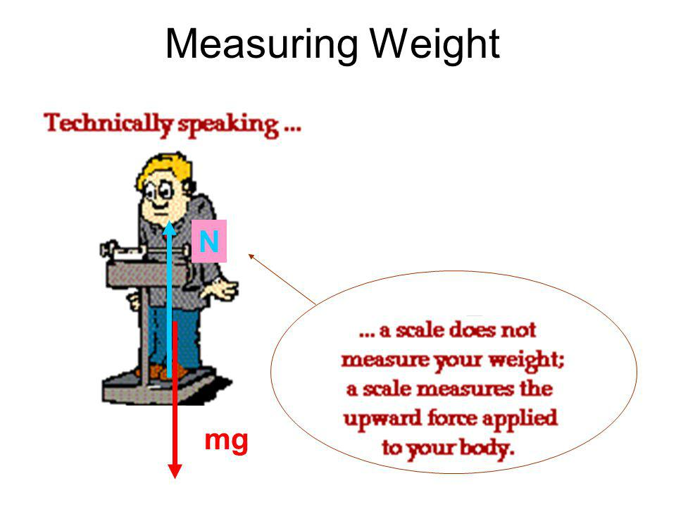 Measuring Weight mg N
