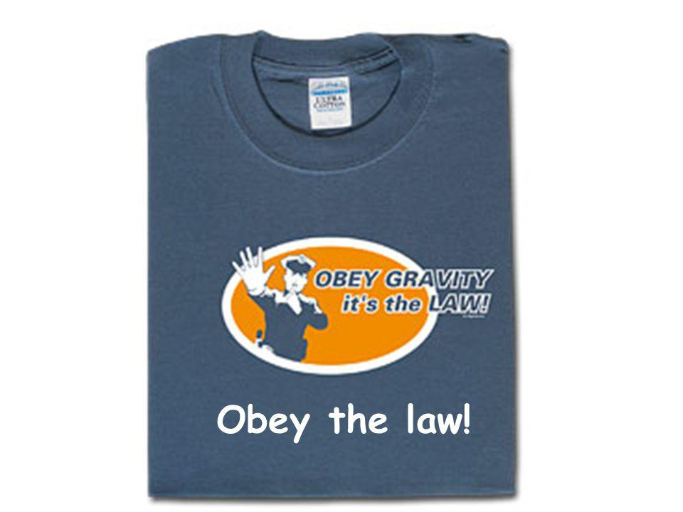 summary Obey the law!