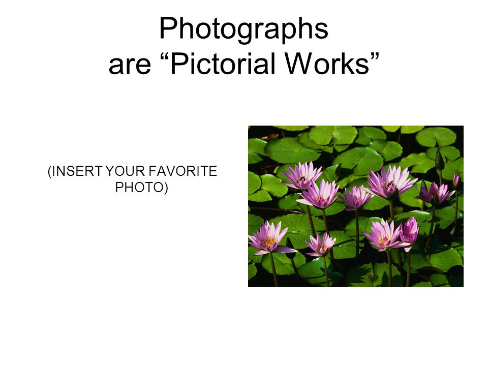 Photographs are Pictorial Works (INSERT YOUR FAVORITE PHOTO)