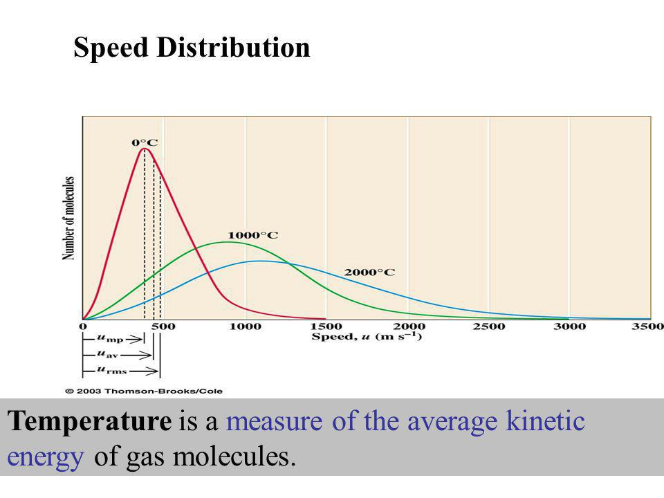 Speed Distribution Temperature is a measure of the average kinetic energy of gas molecules.