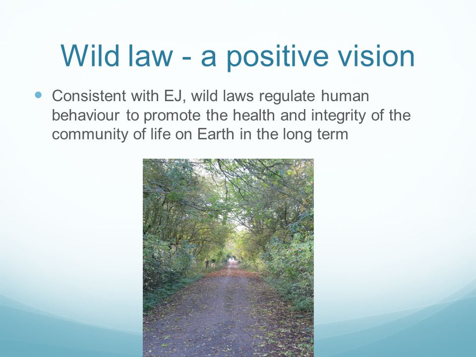 Wild law - a positive vision Consistent with EJ, wild laws regulate human behaviour to promote the health and integrity of the community of life on Earth in the long term