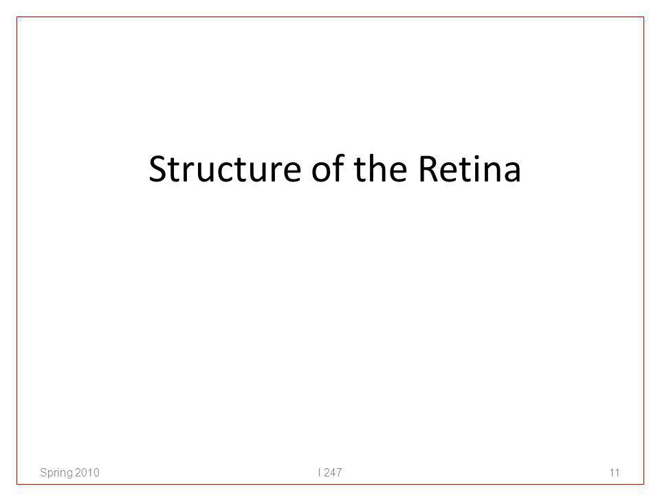 Structure of the Retina Spring 2010I 24711
