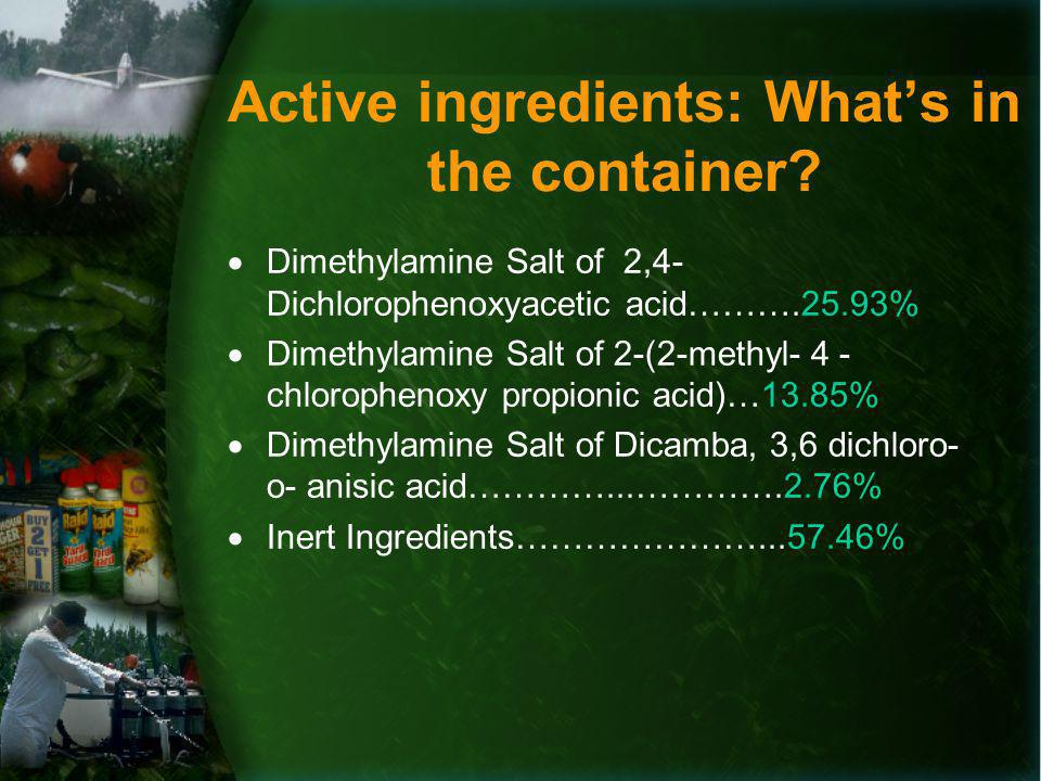 Active ingredients: Whats in the container.