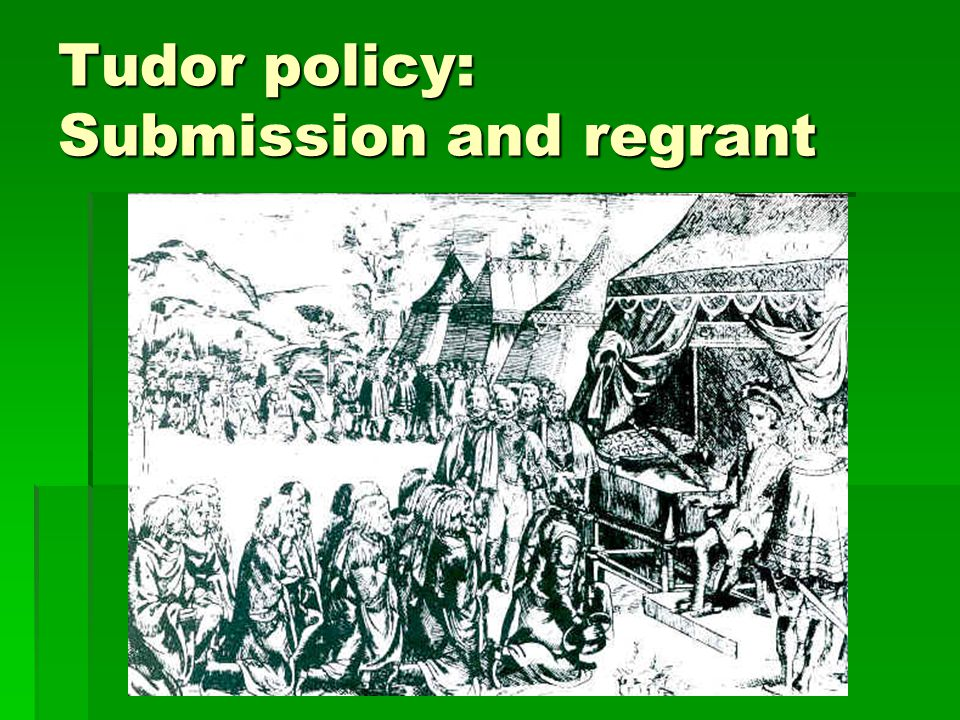 Tudor policy: Submission and regrant