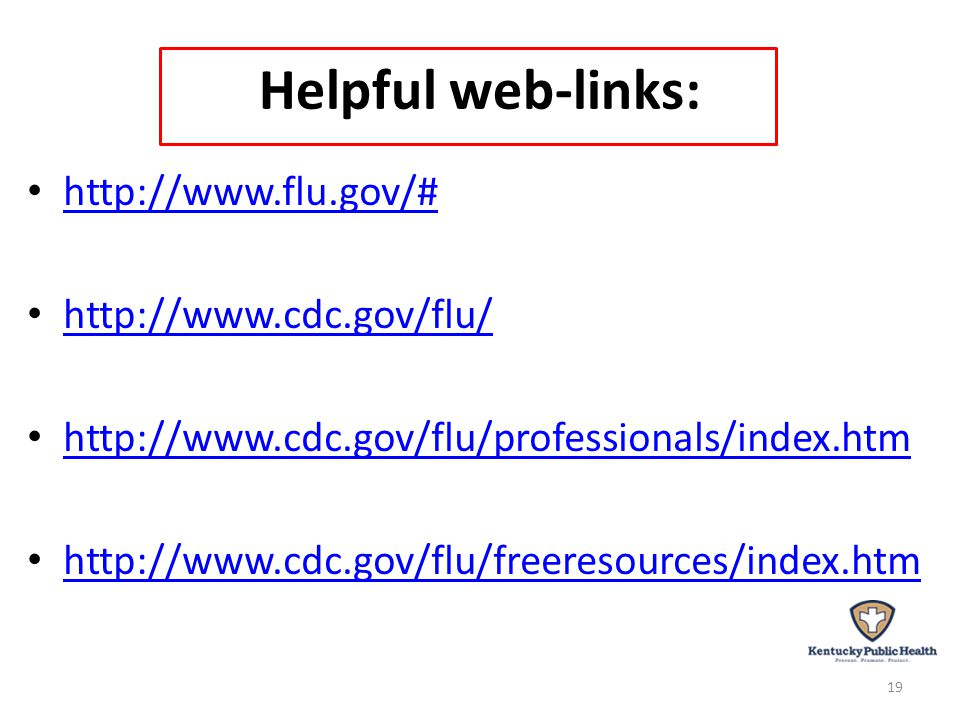 Helpful web-links: http://www.flu.gov/# http://www.cdc.gov/flu/ http://www.cdc.gov/flu/professionals/index.htm http://www.cdc.gov/flu/freeresources/index.htm 19