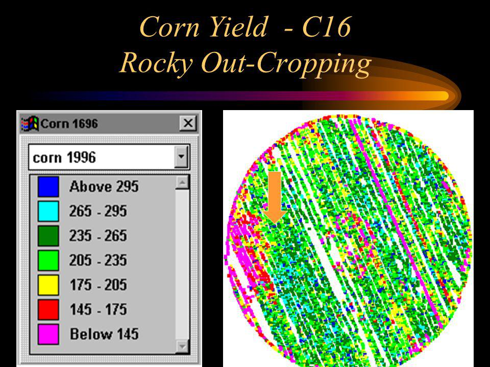 Corn Yield - C16 Rocky Out-Cropping