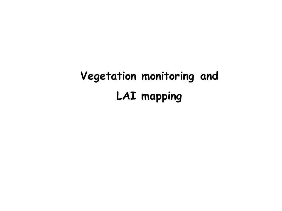 Vegetation monitoring and LAI mapping