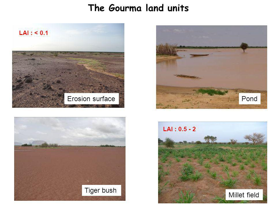 The Gourma land units PondErosion surface Tiger bush Millet field LAI : < 0.1 LAI : 0.5 - 2