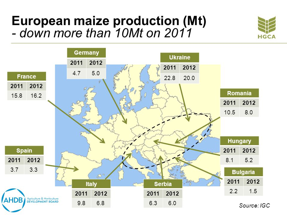 European maize production (Mt) - down more than 10Mt on 2011 Germany 20112012 4.75.0 Hungary 20112012 8.15.2 Italy 20112012 9.86.8 France 20112012 15.816.2 Romania 20112012 10.58.0 Ukraine 20112012 22.820.0 Spain 20112012 3.73.3 Bulgaria 20112012 2.21.5 Serbia 20112012 6.36.0 Source: IGC