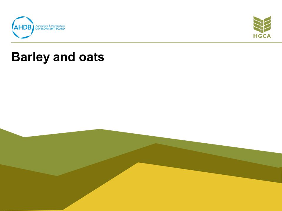 Barley and oats