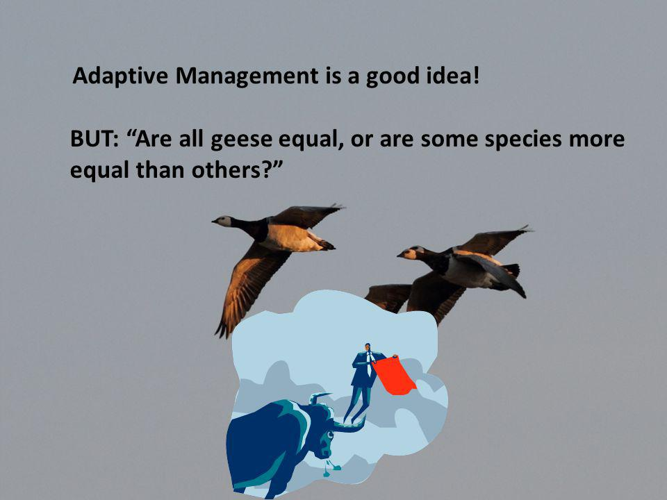 Adaptive Management is a good idea.