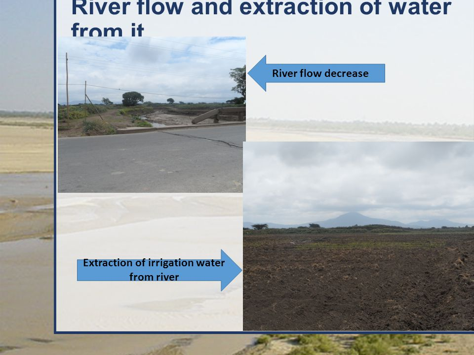 River flow and extraction of water from it River flow decrease Extraction of irrigation water from river