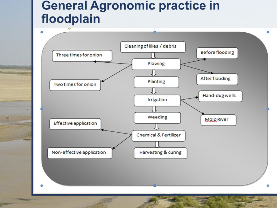 General Agronomic practice in floodplain