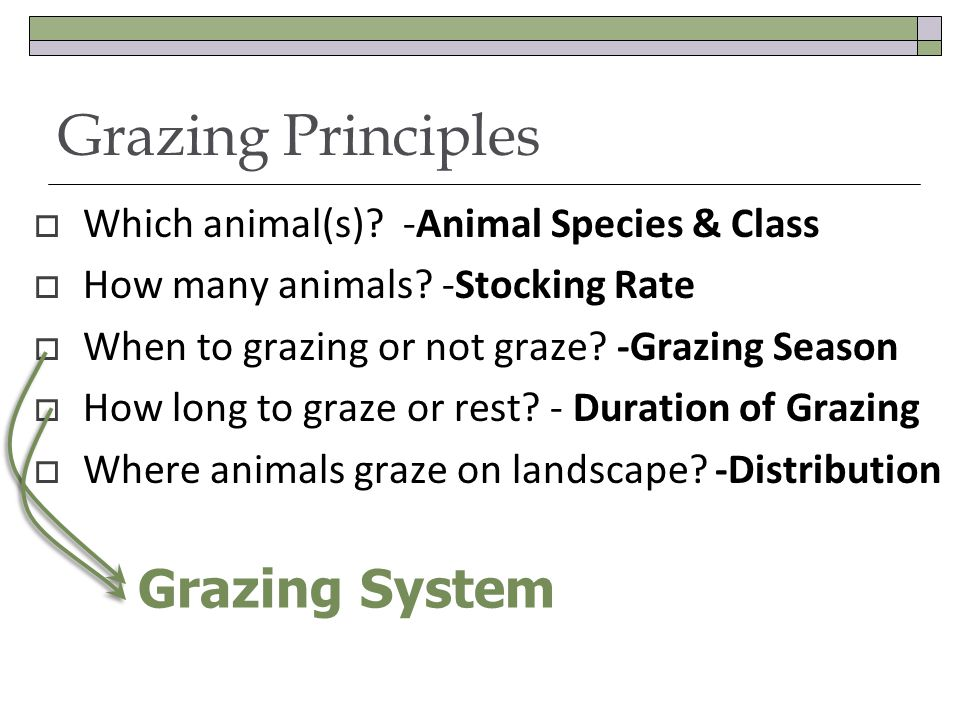 Grazing Principles Which animal(s). -Animal Species & Class How many animals.