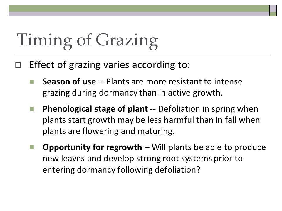 Timing of Grazing Effect of grazing varies according to: Season of use -- Plants are more resistant to intense grazing during dormancy than in active growth.