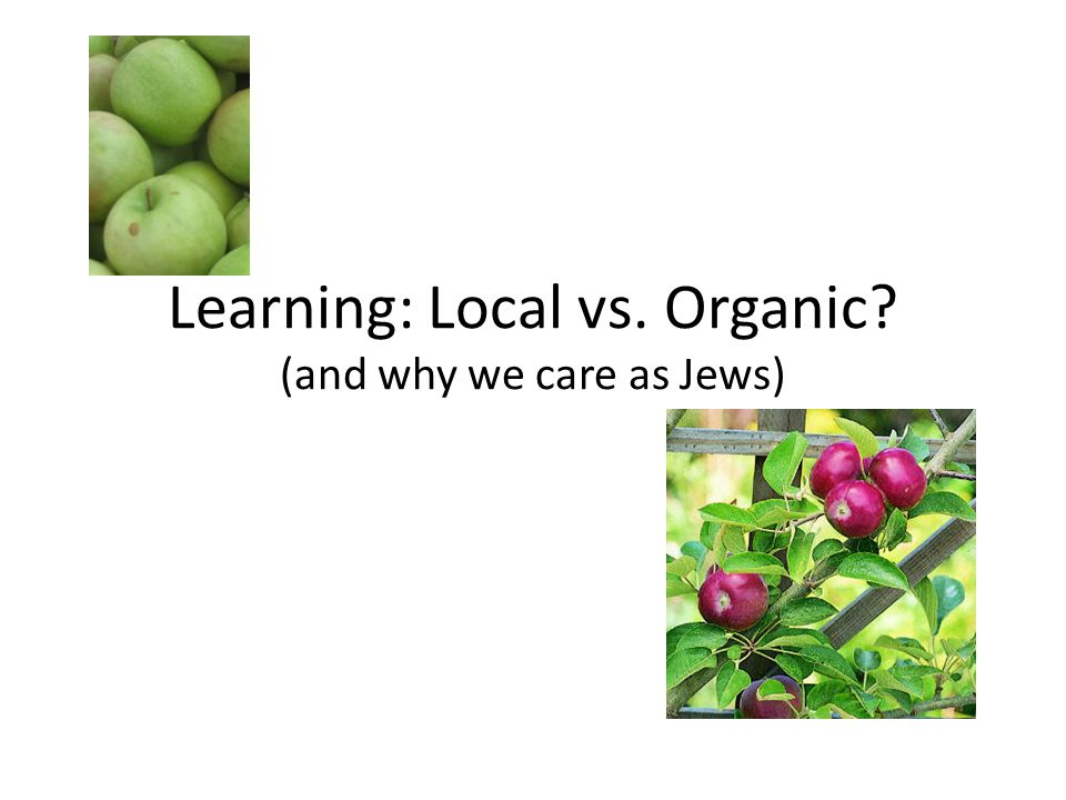 Learning: Local vs. Organic (and why we care as Jews)