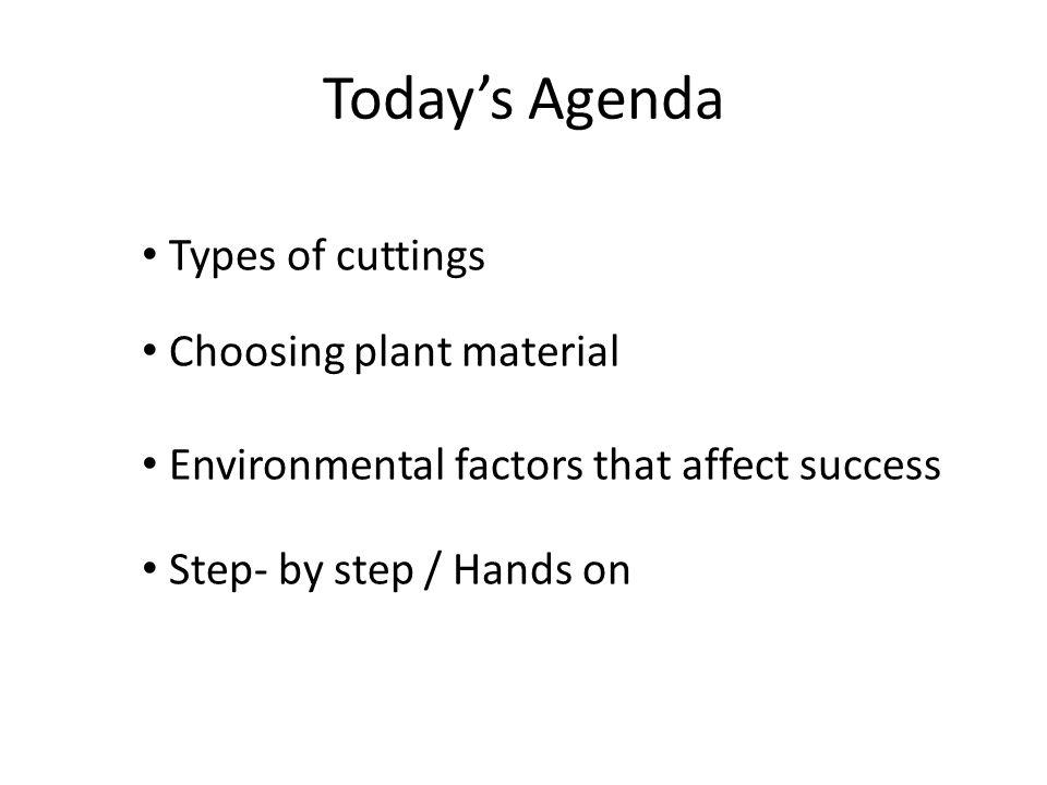 Types of cuttings Choosing plant material Environmental factors that affect success Step- by step / Hands on Todays Agenda