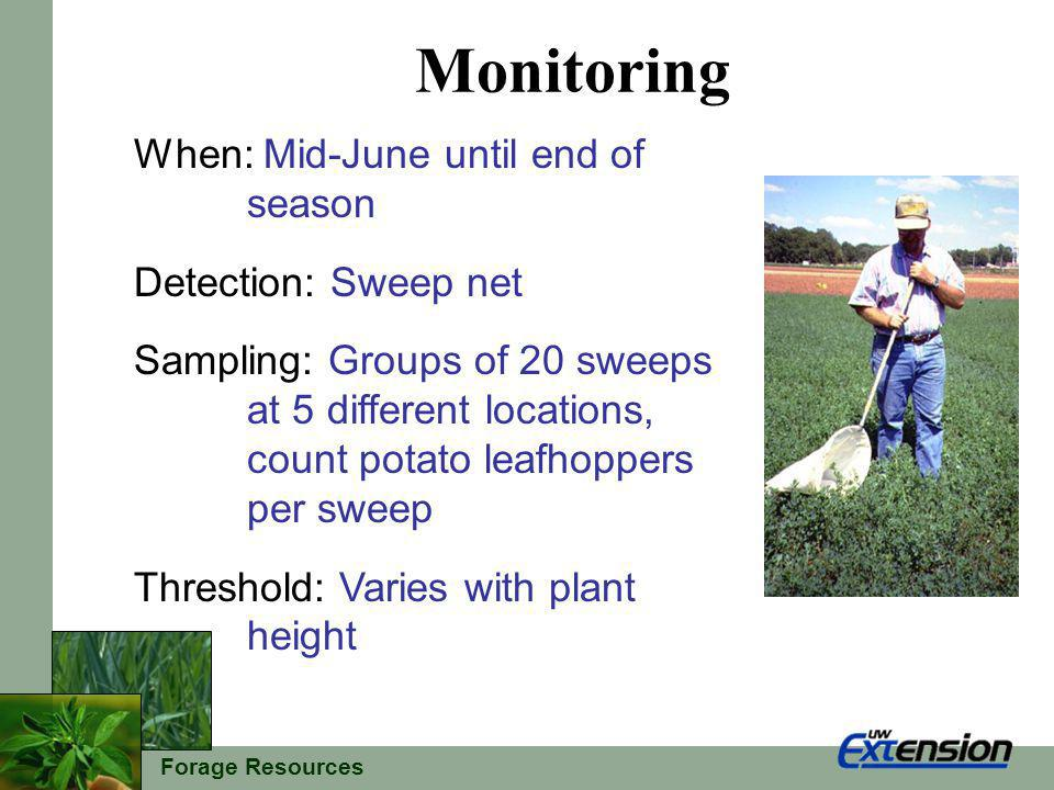 Forage Resources Monitoring When: Mid-June until end of season Detection: Sweep net Sampling: Groups of 20 sweeps at 5 different locations, count potato leafhoppers per sweep Threshold: Varies with plant height