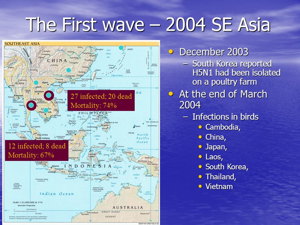 December 2003 December 2003 –South Korea reported H5N1 had been isolated on a poultry farm At the end of March 2004 At the end of March 2004 –Infections in birds Cambodia, Cambodia, China, China, Japan, Japan, Laos, Laos, South Korea, South Korea, Thailand, Thailand, Vietnam Vietnam The First wave – 2004 SE Asia 12 infected; 8 dead Mortality: 67% 27 infected; 20 dead Mortality: 74%
