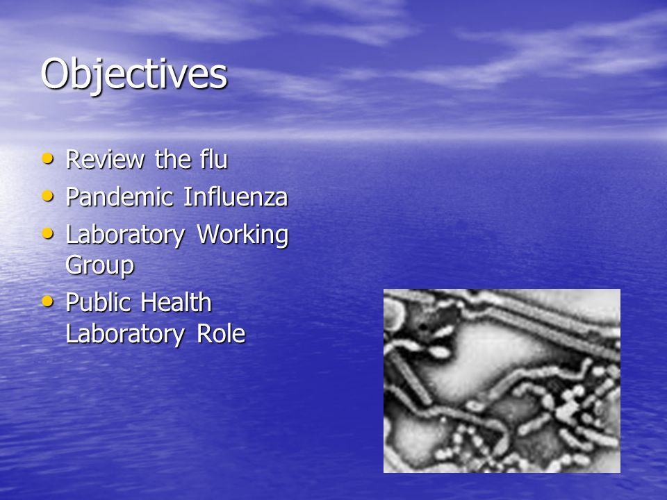 Objectives Review the flu Review the flu Pandemic Influenza Pandemic Influenza Laboratory Working Group Laboratory Working Group Public Health Laboratory Role Public Health Laboratory Role
