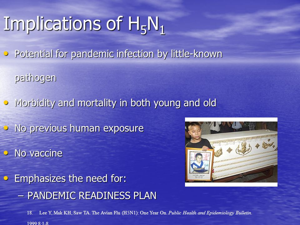 Implications of H 5 N 1 Potential for pandemic infection by little-known pathogen Potential for pandemic infection by little-known pathogen Morbidity and mortality in both young and old Morbidity and mortality in both young and old No previous human exposure No previous human exposure No vaccine No vaccine Emphasizes the need for: Emphasizes the need for: –PANDEMIC READINESS PLAN 18.