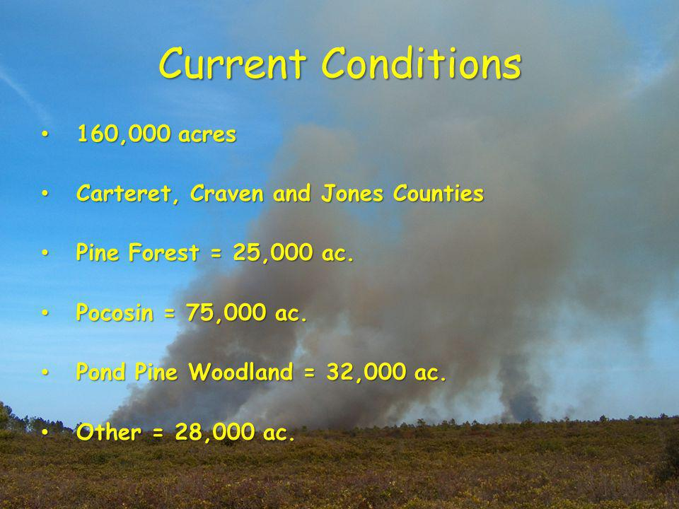Current Conditions 160,000 acres 160,000 acres Carteret, Craven and Jones Counties Carteret, Craven and Jones Counties Pine Forest = 25,000 ac.