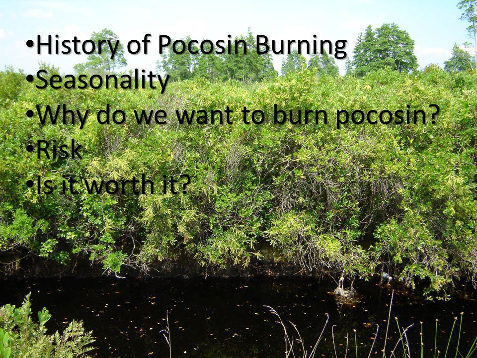 History of Pocosin Burning History of Pocosin Burning Seasonality Seasonality Why do we want to burn pocosin.