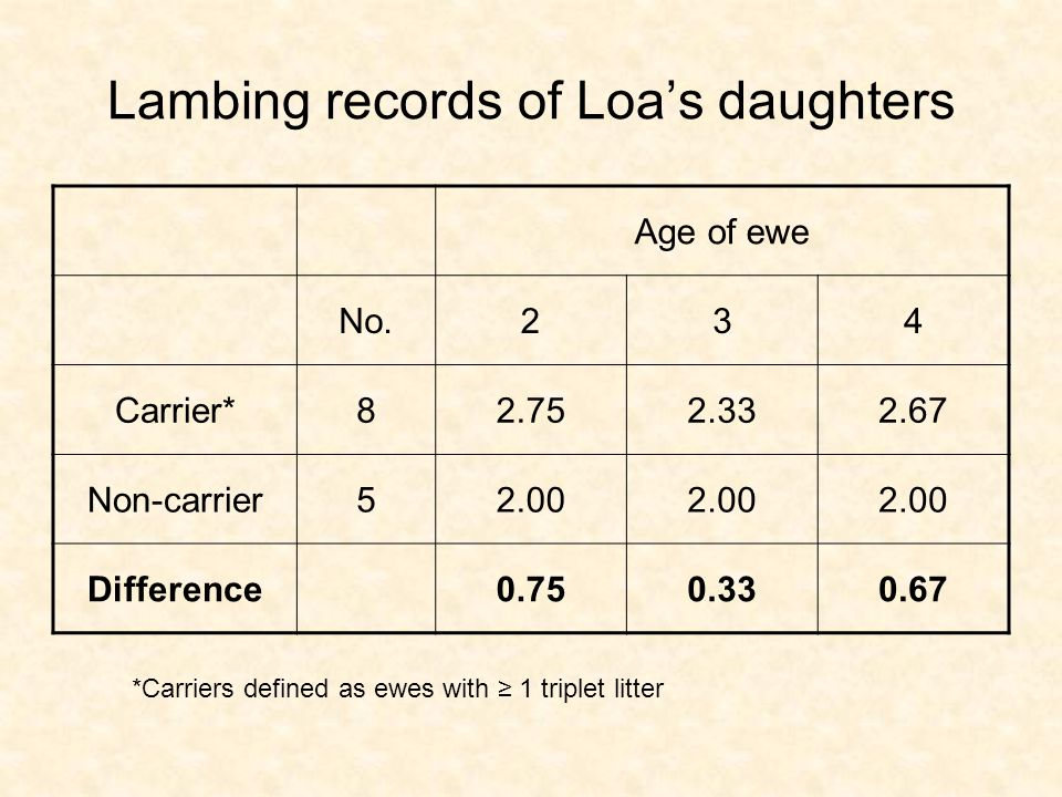 Lambing records of Loas daughters Age of ewe No.234 Carrier*82.752.332.67 Non-carrier52.00 Difference0.750.330.67 *Carriers defined as ewes with 1 triplet litter