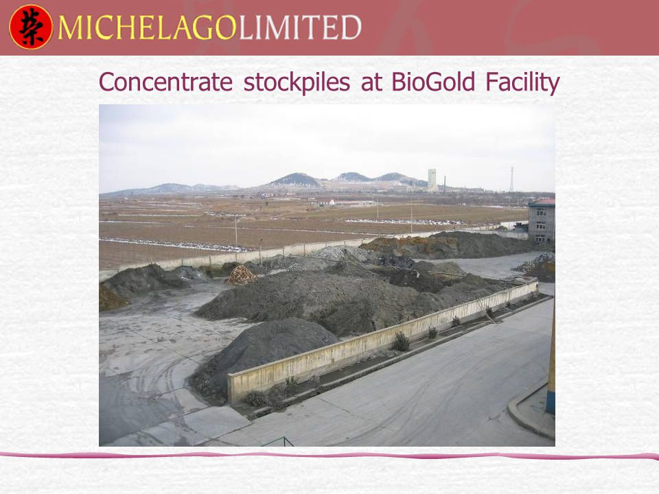 Concentrate stockpiles at BioGold Facility