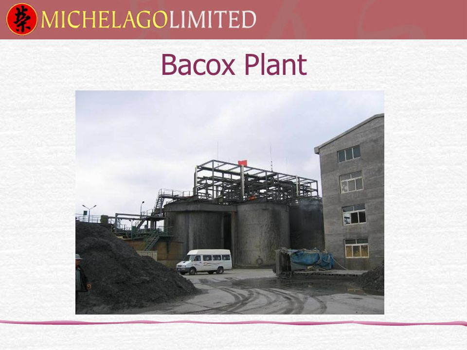Bacox Plant