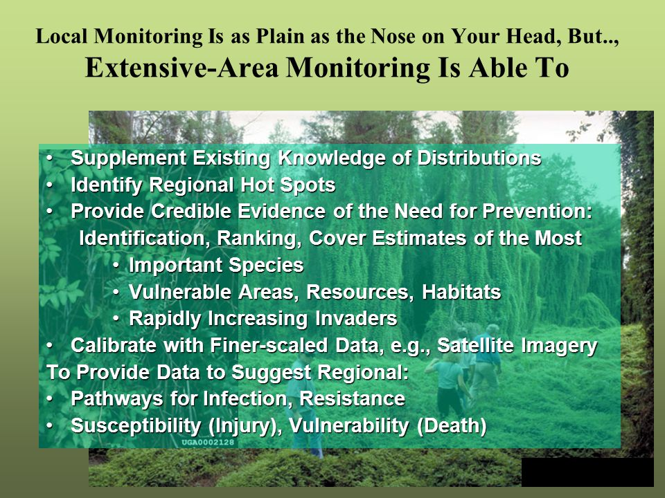 Local Monitoring Is as Plain as the Nose on Your Head, But.., Extensive-Area Monitoring Is Able To Supplement Existing Knowledge of DistributionsSupplement Existing Knowledge of Distributions Identify Regional Hot SpotsIdentify Regional Hot Spots Provide Credible Evidence of the Need for Prevention:Provide Credible Evidence of the Need for Prevention: Identification, Ranking, Cover Estimates of the Most Important SpeciesImportant Species Vulnerable Areas, Resources, HabitatsVulnerable Areas, Resources, Habitats Rapidly Increasing InvadersRapidly Increasing Invaders Calibrate with Finer-scaled Data, e.g., Satellite ImageryCalibrate with Finer-scaled Data, e.g., Satellite Imagery To Provide Data to Suggest Regional: Pathways for Infection, ResistancePathways for Infection, Resistance Susceptibility (Injury), Vulnerability (Death)Susceptibility (Injury), Vulnerability (Death) Climbing fern