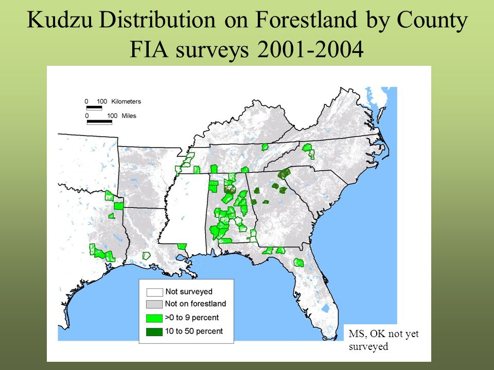 Kudzu Distribution on Forestland by County FIA surveys 2001-2004 MS, OK not yet surveyed