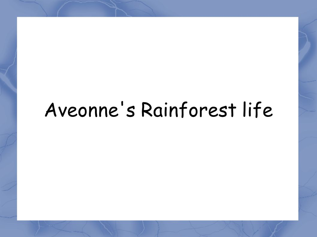 Aveonne s Rainforest life