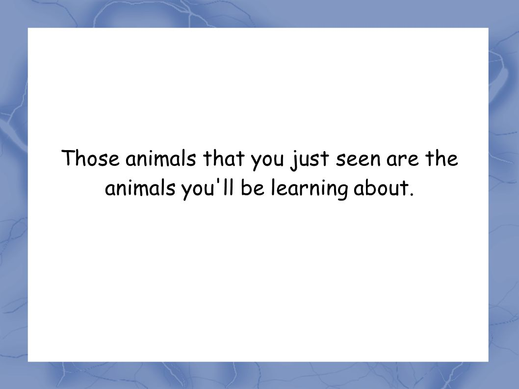 Those animals that you just seen are the animals you ll be learning about.