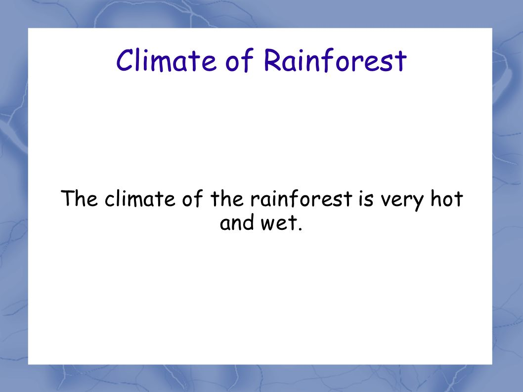Climate of Rainforest The climate of the rainforest is very hot and wet.