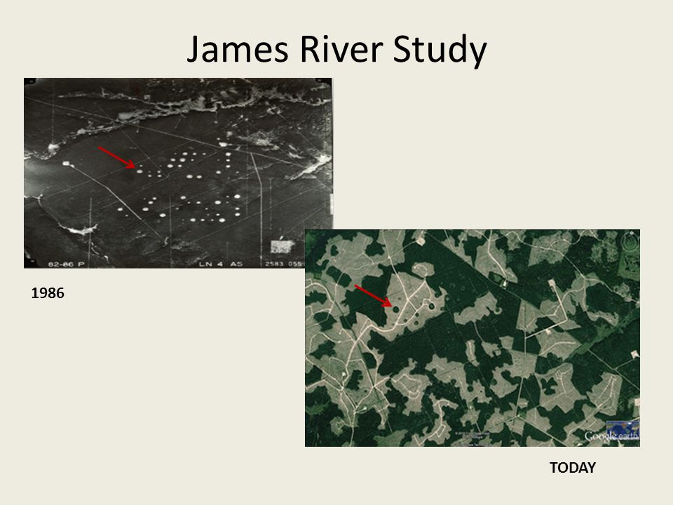James River Study 1986 TODAY