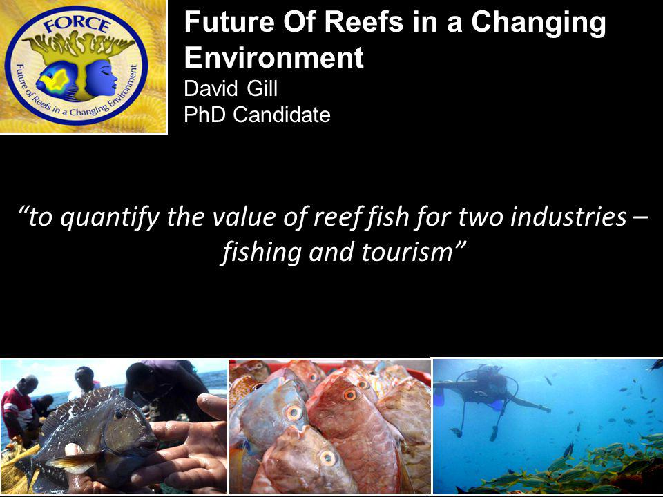 to quantify the value of reef fish for two industries – fishing and tourism Future Of Reefs in a Changing Environment David Gill PhD Candidate