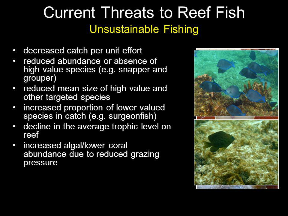 decreased catch per unit effort reduced abundance or absence of high value species (e.g.