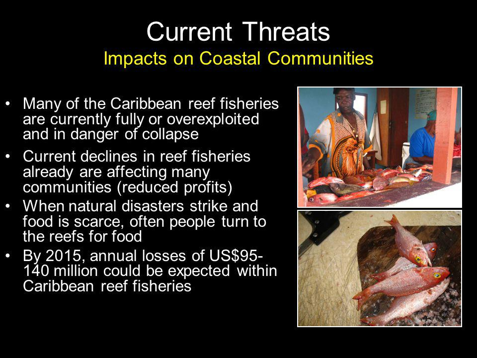 Current Threats Impacts on Coastal Communities Many of the Caribbean reef fisheries are currently fully or overexploited and in danger of collapse Current declines in reef fisheries already are affecting many communities (reduced profits) When natural disasters strike and food is scarce, often people turn to the reefs for food By 2015, annual losses of US$95- 140 million could be expected within Caribbean reef fisheries