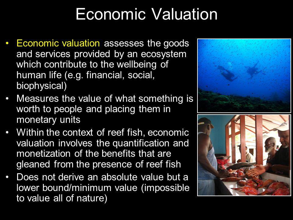 Economic Valuation Economic valuation assesses the goods and services provided by an ecosystem which contribute to the wellbeing of human life (e.g.