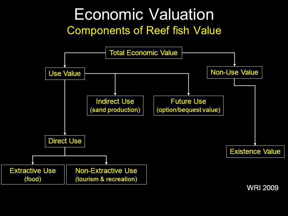 Economic Valuation Components of Reef fish Value Total Economic Value Non-Use Value Existence Value Future Use (option/bequest value) Indirect Use (sand production) Direct Use Non-Extractive Use (tourism & recreation) Extractive Use (food) Use Value WRI 2009
