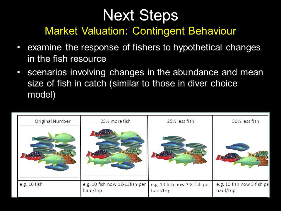 examine the response of fishers to hypothetical changes in the fish resource scenarios involving changes in the abundance and mean size of fish in catch (similar to those in diver choice model) Next Steps Market Valuation: Contingent Behaviour
