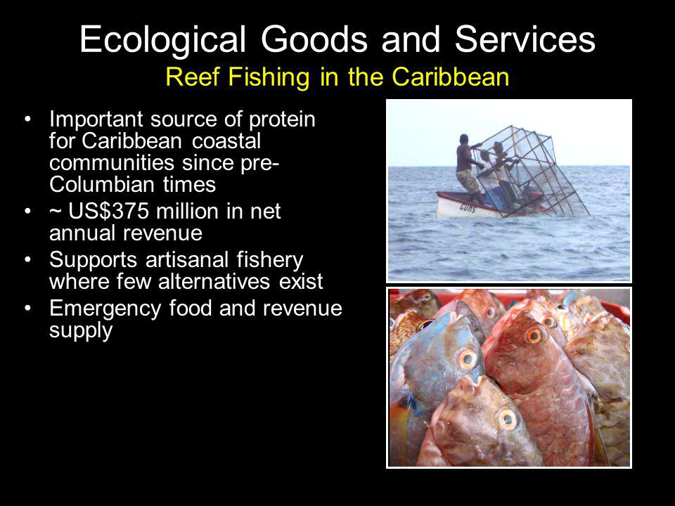 Important source of protein for Caribbean coastal communities since pre- Columbian times ~ US$375 million in net annual revenue Supports artisanal fishery where few alternatives exist Emergency food and revenue supply Ecological Goods and Services Reef Fishing in the Caribbean