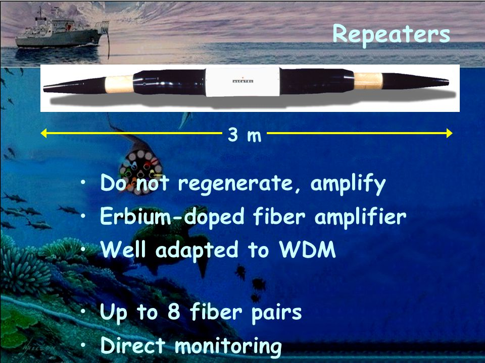Repeaters Do not regenerate, amplify Erbium-doped fiber amplifier Well adapted to WDM Up to 8 fiber pairs Direct monitoring 3 m