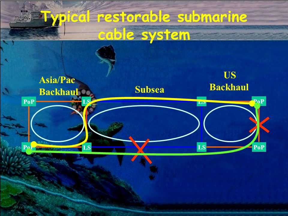 Typical restorable submarine cable system LS Subsea LS PoP Asia/Pac Backhaul US Backhaul