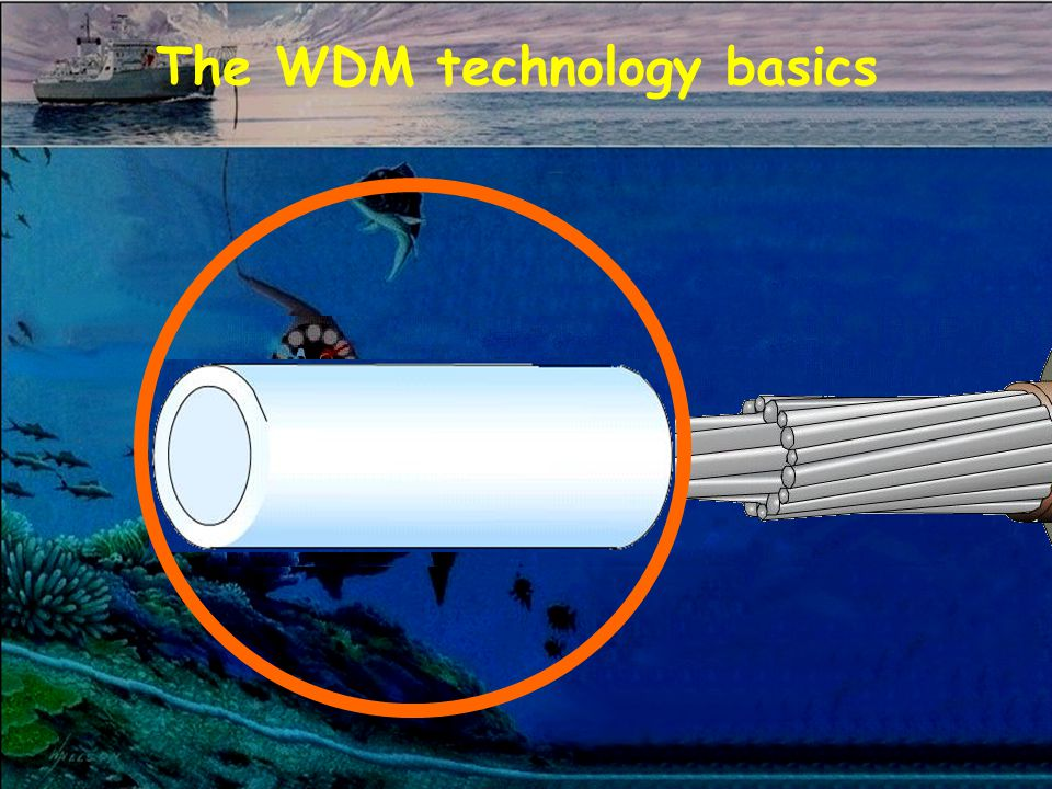 The WDM technology basics