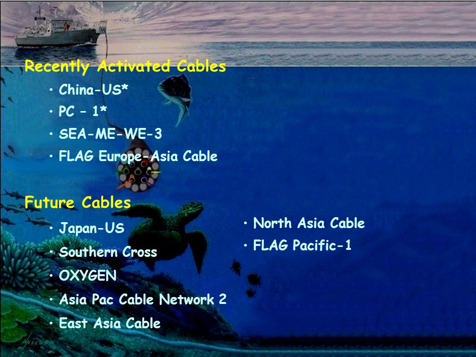 Recently Activated Cables China-US* PC – 1* SEA-ME-WE-3 FLAG Europe-Asia Cable Future Cables Japan-US Southern Cross OXYGEN Asia Pac Cable Network 2 East Asia Cable North Asia Cable FLAG Pacific-1