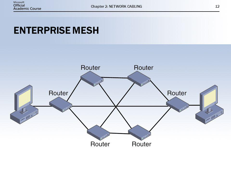 Chapter 2: NETWORK CABLING12 ENTERPRISE MESH