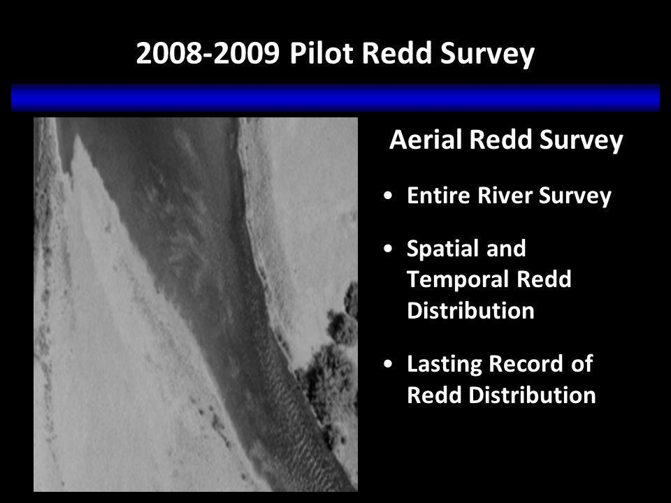 2008-2009 Pilot Redd Survey Aerial Redd Survey Entire River Survey Spatial and Temporal Redd Distribution Lasting Record of Redd Distribution