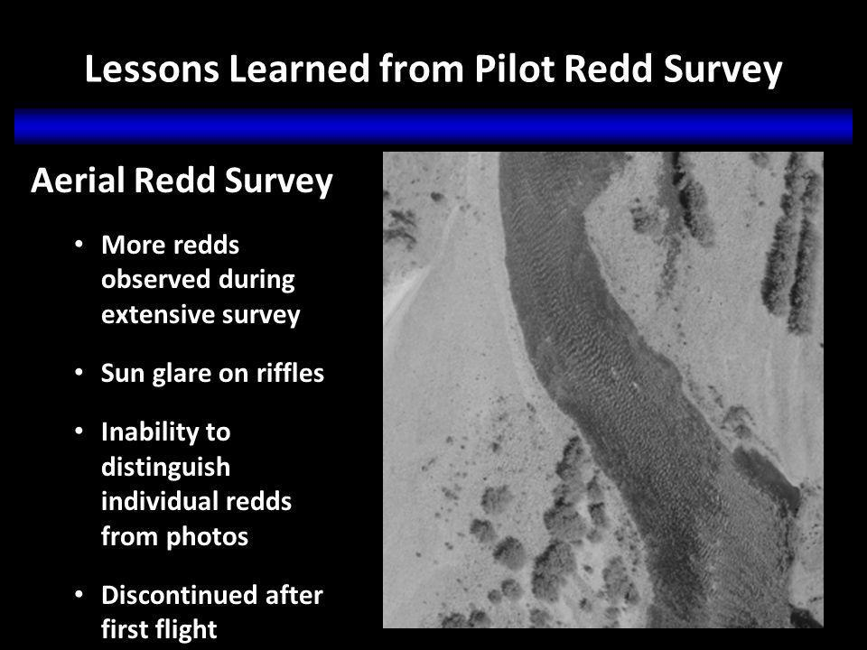 Lessons Learned from Pilot Redd Survey Aerial Redd Survey More redds observed during extensive survey Sun glare on riffles Inability to distinguish individual redds from photos Discontinued after first flight